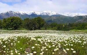 bariloche-primavera-verao-baixa-temporada